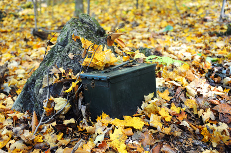 caching: Military ammunition box serves as a geocache hidden in the mountains of Tennessee.  Golden Autumn leaves surround metal box.