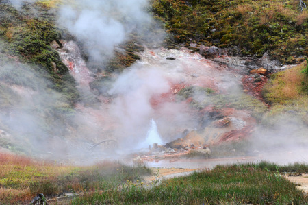 thermal spring: Colorful hot spring bubbles and roils in Norris Gyser Basin in Yellowstone National Park.
