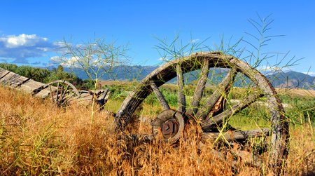 spokes: Abandoned and dilapidated wagon sits overgrown with weeds.  Wagon sits in Paradise Valley, Montana. Stock Photo