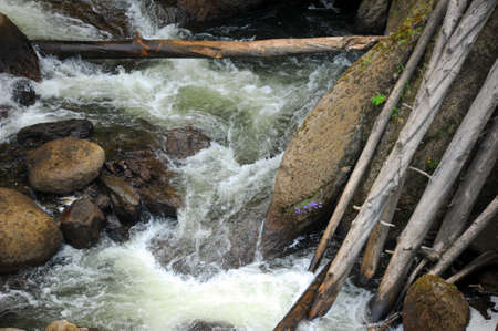 rock bottom: Gibbon River carries fallen trees and logs over Gibbon Falls in Yellowstone National Park.