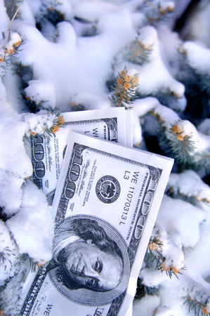 stash: Stack of play money lays buried in snow.  Pine boughs frame stash.