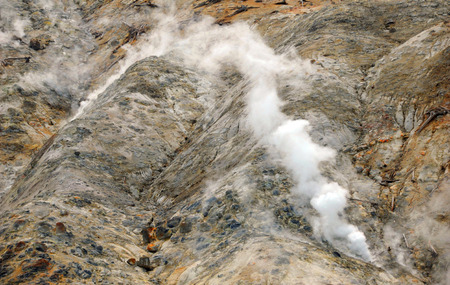 vents: Steam escapes from ground vents in Yellowstone National Park.  Hillside is at Mammoth Springs.