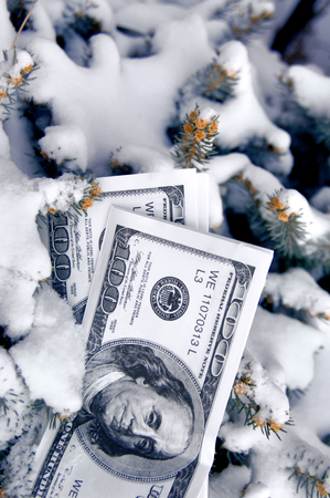 Play money lays half buried in the snow.  Image could represent cold cash, frozen assets, etc.