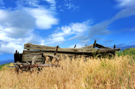 carreta madera: Full length image of a broken down, wooden, wagon.  It is sitting in a field surrounded and overgrown with weeds.  Blue sky overhead.
