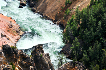 canyon walls: Yellowstone River rapids snake along with roiling and boiling white water.  Canyon walls rise steeply on each side.