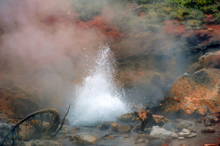spewing: Bubbling and spewing small hot spring boils with heat in Yellowstone National Park.