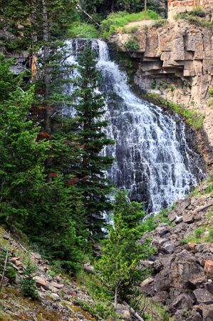 golden section: Rustic Falls located in Yellowstone National Park is a horsetail waterfall located along the Golden Gate section between Mammoth and Norris Springs. Stock Photo