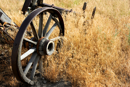 hubs: Wagon wheel axels lay rotting in a field.  Wheels have metal staves and wooden hubs and spokes.  Wagon lays in a field in Wyoming.