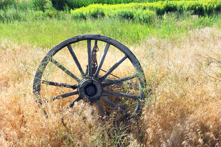 carreta madera: Antique, wooden wagon wheel lies overgrown with weeds in a field in Happy Valley, Wyoming.