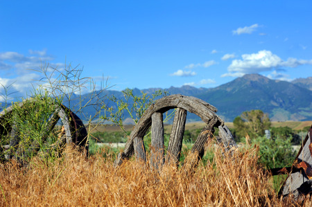 pioneering: Rotting, wooden wagon wheels lay buried in weeds in Paradise Valley, Montana.  Mountains loom in the distance.
