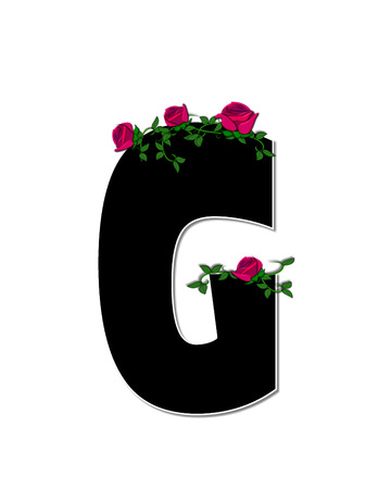 trellis: The letter G, in the alphabet set Rose Trellis, is black with white outline.  Roses and vines grow and spread around letter. Stock Photo
