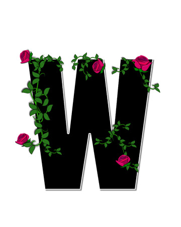 spread around: The letter W, in the alphabet set Rose Trellis, is black with white outline.  Roses and vines grow and spread around letter.