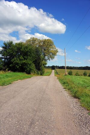 disappears: Gravel, country road disappears into the distance.  Wisconsin corn crops line sides.