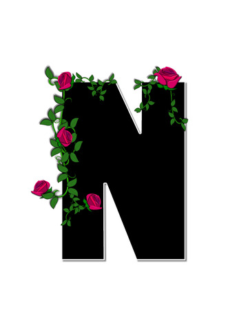 spread around: The letter N, in the alphabet set Rose Trellis, is black with white outline.  Roses and vines grow and spread around letter. Stock Photo