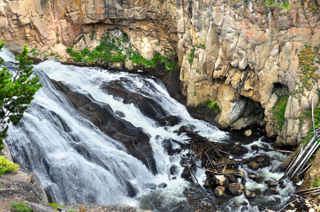 tiers: Gibbon Falls in Yellowstone National Park splashes over tiers ledges. Stock Photo