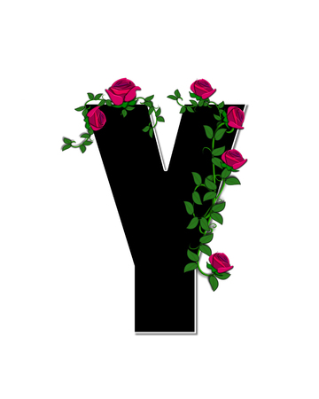 spread around: The letter Y, in the alphabet set Rose Trellis, is black with white outline.  Roses and vines grow and spread around letter.
