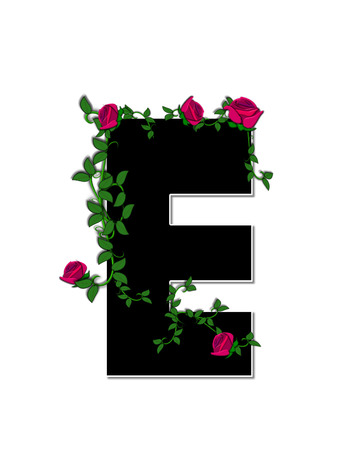 spread around: The letter E, in the alphabet set Rose Trellis, is black with white outline.  Roses and vines grow and spread around letter.