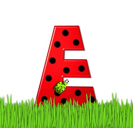 """mariquitas: El rojo de la letra E, en el conjunto de alfabeto de """"Lady Bug Red,"""" tiene grandes lunares negro y está decorado con mariquitas en 3D. Carta se encuentra en alto, hierba jardín. Foto de archivo"""