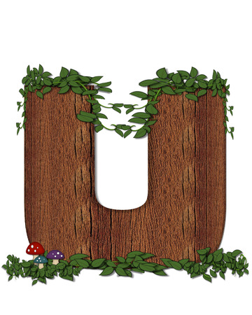 The letter U, in the alphabet set Log is filled with wod texture.  Vines and colorful mushrooms grow around letter.  Some letters have knot holes with peeking eyes.
