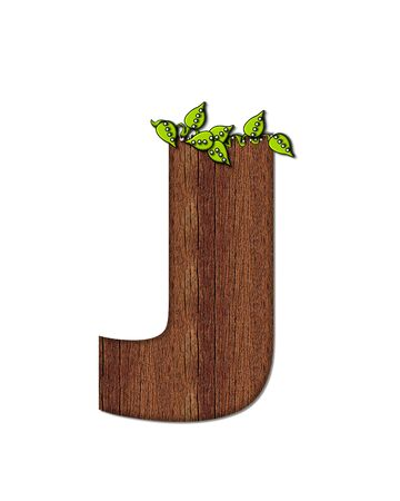 woodsy: The letter J, in the alphabet set Woodsy, is filled with wood grain and resembles a tree. Three dimensional vnes are spread across top of letter.