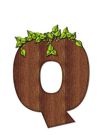 The letter Q, in the alphabet set Woodsy, is filled with wood grain and resembles a tree. Three dimensional vnes are spread across top of letter.