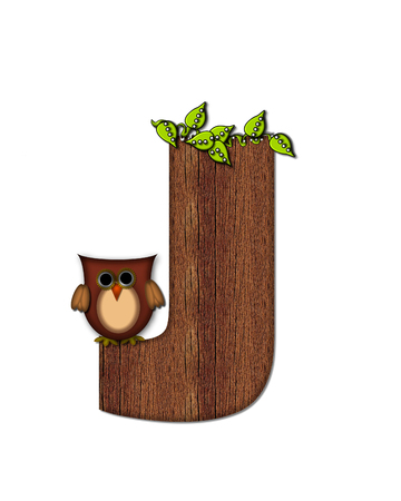 The letter J, in the alphabet set Woodsy Owl is filled with wood texture.  3D vines hang on letter.  Letter is decorated with a brown owl.