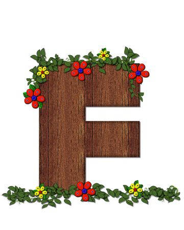 ivy vine: The letter F, in the alphabet set Woodsy Owl is filled with wood texture.  3D flowers hand on vines surrounding letter.