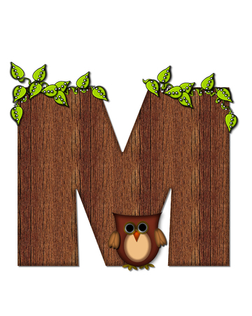 The letter M, in the alphabet set Woodsy Owl is filled with wood texture.  3D vines hang on letter.  Letter is decorated with a brown owl. Stock Photo