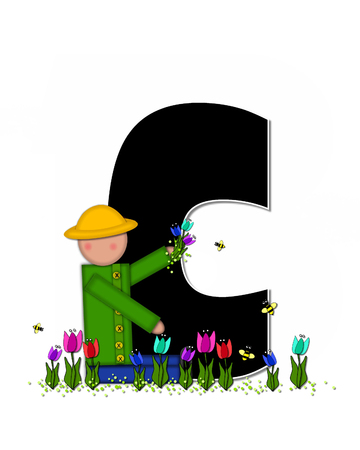 wears: The letter C, in the alphabet set Children Spring Tulips is black and trimmed with white.  Child holds bouquet of tulips and wears a straw hat.  Tulip garden grows at her feet. Stock Photo