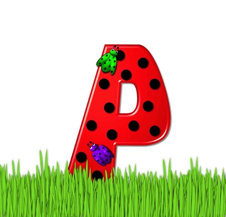 """mariquitas: La letra P rojo, en el conjunto de alfabeto de """"Lady Bug Red,"""" tiene grandes lunares negro y está decorado con mariquitas en 3D. Carta se encuentra en alto, hierba jardín."""