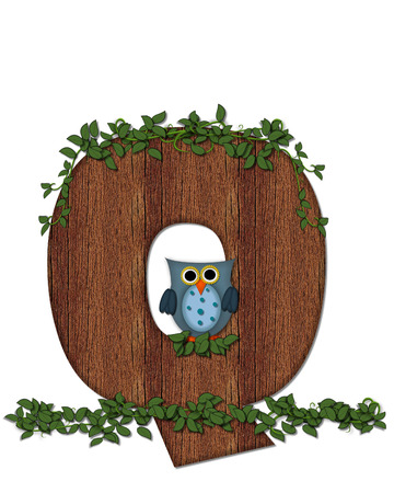 bark: The letter Q, in the alphabet set Deep Woods Owl is filled with wod texture and has vines growing all over it.  Owl sits on log-style letter.