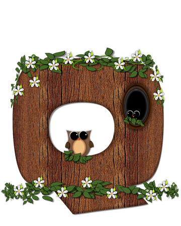 The letter Q, in the alphabet set Log Home is filled with wod texture.  Flower bloom on vines hanging on letter.  One owl hides in knothole and the other outside the stump home. Stock Photo