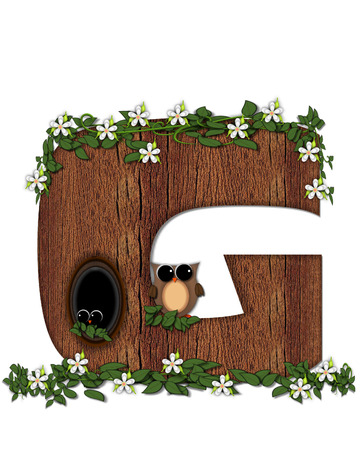 knothole: The letter G, in the alphabet set Log Home is filled with wod texture.  Flower bloom on vines hanging on letter.  One owl hides in knothole and the other outside the stump home. Stock Photo