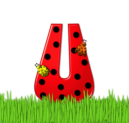 mariquitas: The red letter U, in the alphabet set Lady Bug Red, has large black polka dots and is decorated with 3D ladybugs.  Letter is nestled in tall, garden grass. Foto de archivo