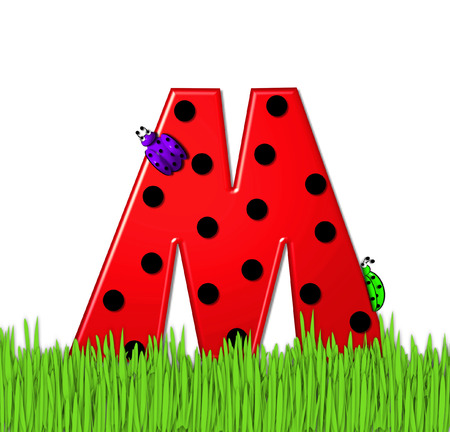 lady bug: The red letter M, in the alphabet set Lady Bug Red, has large black polka dots and is decorated with 3D ladybugs.  Letter is nestled in tall, garden grass. Stock Photo