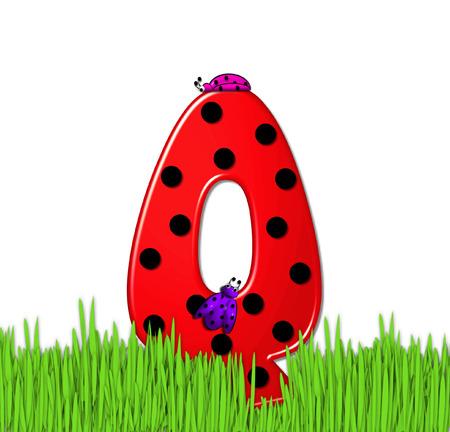 """mariquitas: El rojo de la letra Q, en el conjunto de alfabeto de """"Lady Bug Red,"""" tiene grandes lunares negro y está decorado con mariquitas en 3D. Carta se encuentra en alto, hierba jardín."""