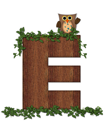 The letter E, in the alphabet set Deep Woods Owl is filled with wod texture and has vines growing all over it.  Owl sits on log-style letter.