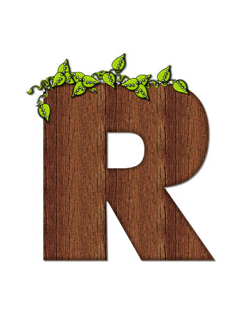 woodsy: The letter R, in the alphabet set Woodsy, is filled with wood grain and resembles a tree. Three dimensional vnes are spread across top of letter.