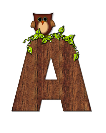 The letter A, in the alphabet set Woodsy Owl is filled with wood texture.  3D vines hang on letter.  Letter is decorated with a brown owl.