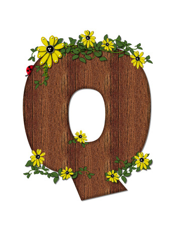 The letter Q, in the alphabet set Ladybug and Sunflower is filled with wood texture.  Ladybug, sunflowers and vines decorate letter. Stock Photo
