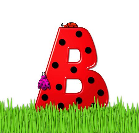 """mariquitas: El rojo de la letra B, en el conjunto de alfabeto de """"Lady Bug Red,"""" tiene grandes lunares negro y está decorado con mariquitas en 3D. Carta se encuentra en alto, hierba jardín."""