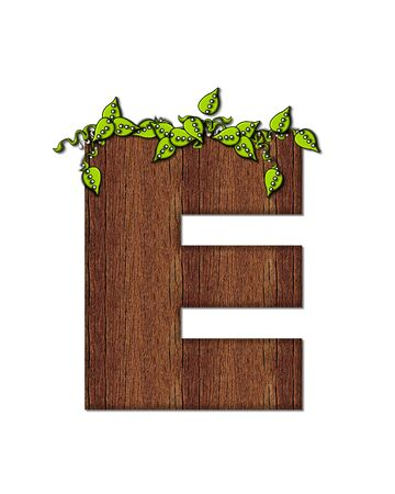 woodsy: The letter E, in the alphabet set Woodsy, is filled with wood grain and resembles a tree. Three dimensional vnes are spread across top of letter.