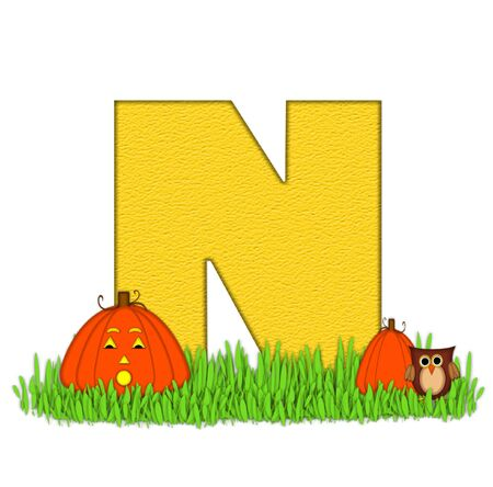 pumpkin patch: The letter N, in the alphabet set Pumpkin Patch  is  a yellow and and sits in the green grass of a pumpkin patch.  Two orange pumpkins and an owl decorate letter.