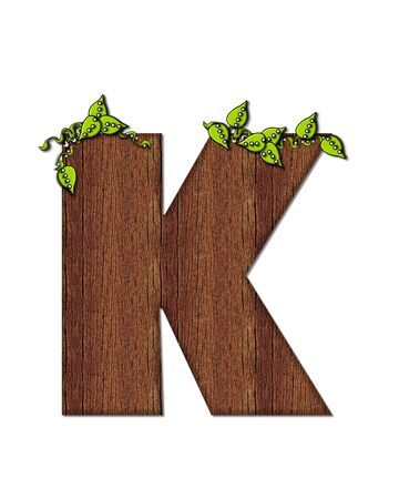wood grain: The letter K, in the alphabet set Woodsy, is filled with wood grain and resembles a tree. Three dimensional vnes are spread across top of letter.