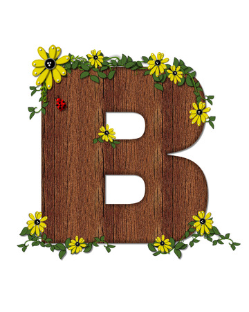 The letter B, in the alphabet set Ladybug and Sunflower is filled with wood texture.  Ladybug, sunflowers and vines decorate letter. Stock Photo