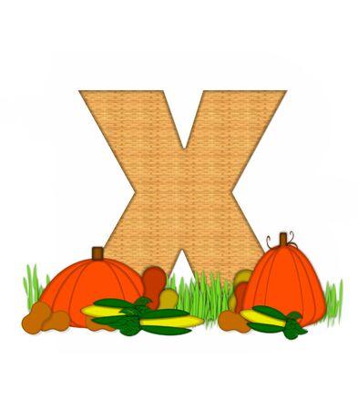 """bounty: La letra X, en el conjunto del alfabeto de """"Beato Bounty"""", está lleno de textura de mimbre. Carta sienta en el campo de hierba rodeado de verduras de otoño."""