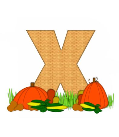 grassy field: The letter X, in the alphabet set Blessed Bounty, is filled with wicker texture.  Letter sits in grassy field surrounded by Fall vegetables. Stock Photo