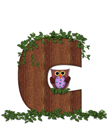 The letter C, in the alphabet set Deep Woods Owl is filled with wod texture and has vines growing all over it.  Owl sits on log-style letter. Stock Photo