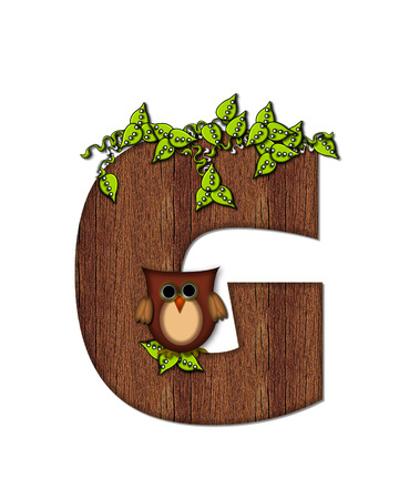 The letter G, in the alphabet set Woodsy Owl is filled with wood texture.  3D vines hang on letter.  Letter is decorated with a brown owl. Stock Photo