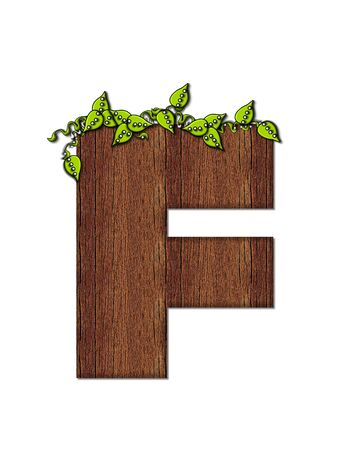 The letter F, in the alphabet set Woodsy, is filled with wood grain and resembles a tree. Three dimensional vnes are spread across top of letter.